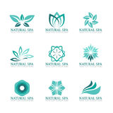 Flower and leaf logo vector set design for Beauty spa salon or hotel Royalty Free Stock Photos