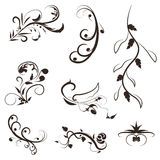 Flower and leaves vector swirl line design,floral swirl illustration set Royalty Free Stock Photo