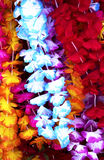 Flower lei background Stock Image
