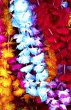 Flower lei background Stock Image