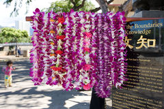 Flower leis at Dr. Sun Yat-sen Statue. Flowers leis decorated Dr. Sun Yat-sen Statue in Chinatown, Honolulu, Hawaii Royalty Free Stock Photography