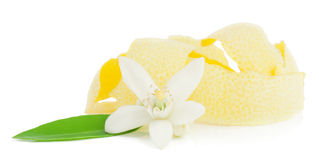 Flower and lemon dried peel. Stock Photos