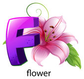 A flower and a letter F Royalty Free Stock Images