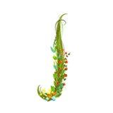 Flower letter J calligraphy floral elegant decorative alphabet Stock Photos