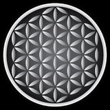 Flower of life royalty free stock photo