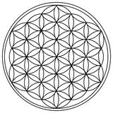 The Flower of Life. Is the modern name given to a geometrical figure composed of multiple evenly-spaced, overlapping circles royalty free illustration