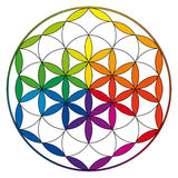 Flower of life, buddhism chakra illustration Royalty Free Stock Photography