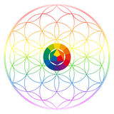 Flower of life, buddhism chakra illustration. Color wheel and rainbow gradient overlay Royalty Free Stock Photos