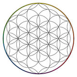 Flower of life, buddhism chakra illustration Royalty Free Stock Photos