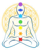 Flower Of Life Chakras Man. Meditating man with the seven main chakras, which match perfectly onto the junctions of the Flower-of-Life-Symbol in the background Vector Illustration