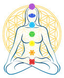 Flower Of Life Chakras Woman. Meditating woman with the seven main chakras, which match perfectly onto the junctions of the Flower-of-Life-Symbol in the Vector Illustration