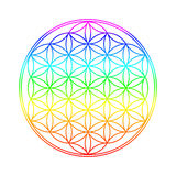 Flower of Life royalty free stock images