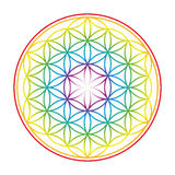 Flower Of Life Colorful Vibrant Glow Royalty Free Stock Image