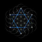 Flower Of Life with david star. Sacred geometry. Vector illustration Royalty Free Stock Photo