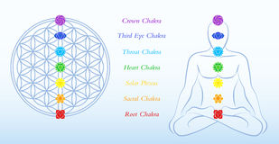 Flower of Life Description Chakras Man Royalty Free Stock Photo