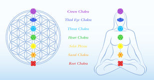 Flower of Life Description Chakras Woman Stock Image