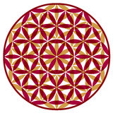 Flower of Life design abstract Stock Images