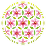 Flower of Life Flowers. Flower-of-life-Symbol composed of pink flowers and green leaves Royalty Free Stock Photo