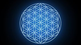 The Flower of Life Forming Sacred Geometry Symbol