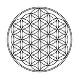 Flower of Life Geometric Design Royalty Free Stock Photos