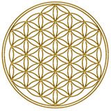 Flower of life - sacred geometry Royalty Free Stock Photography