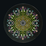 Flower of life. Hand painted on a vinyl record royalty free stock photos