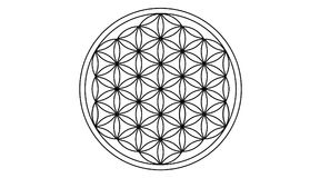 Flower of life. An illustration of the Flower of Life symbol isolated on white background vector illustration