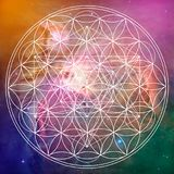 Flower of life and metatron sacred geometry. On space background Stock Photos