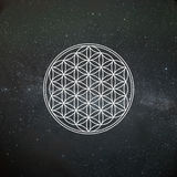 Flower of Life stock images