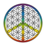 Flower Of Life Peace Symbol Superimposed Stock Photos
