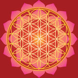 Flower of life in red lotus stock illustration