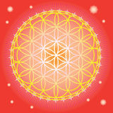 Flower of life in red space vector illustration