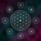 Flower of life. Sacred geometry icons on the cosmic background royalty free illustration