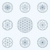 Flower of life. Sacred geometry linear contour icons royalty free illustration