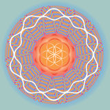 Flower of life seed spring blue mandala Royalty Free Stock Photo