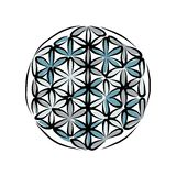 Flower of Life, sketch for your design Royalty Free Stock Image