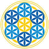 Flower of Life With Spheres. Seven spheres with petals can be found in the Flower of Life, a spiritual symbol and Sacred Geometry since ancient times Stock Images