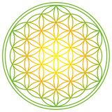 Flower of Life with spring energy colors Stock Images
