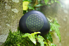 Flower of Life. The Flower of Life on a stone in nature royalty free stock photo