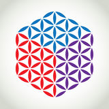 Flower of life symbol Stock Image