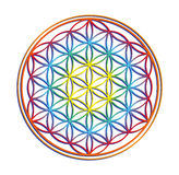 The flower of life Royalty Free Stock Image