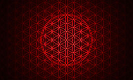 The flower of life symbol red vector illustration