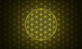 The flower of life symbol yellow vector illustration