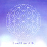 Flower of life vector illustration on the Stock Photography