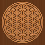 Flower Of Life Wood Texture Carving. Wooden Flower of Life - as a symbol for peaceful and healing nature or natural spirituality - vector illustration on wood Stock Photography
