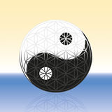 Flower of Life Yin Yang Spheres Stock Photos