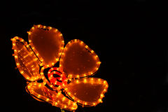 Flower of light at night Stock Photos