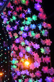 Flower light in the night. Stock Image