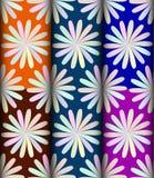 Flower light pattern pack Stock Images