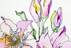 Flower lilly Watercolor deep color texture blue white gray background acrylics paint draw paint draw isolate. Watercolor color texture blue pink white gray vector illustration